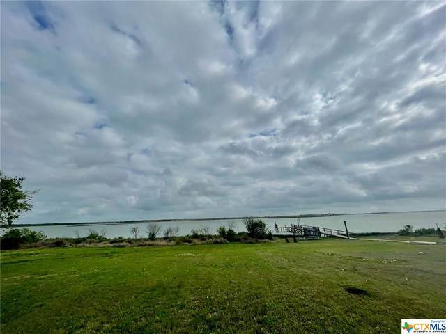 Lot 20 Blue Heron, Port Lavaca, TX 77979 (MLS #435352) :: Kopecky Group at RE/MAX Land & Homes