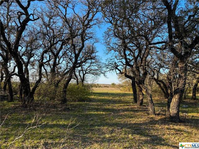Tract 2 Cr 425, Purmela, TX 76566 (MLS #435516) :: The Myles Group