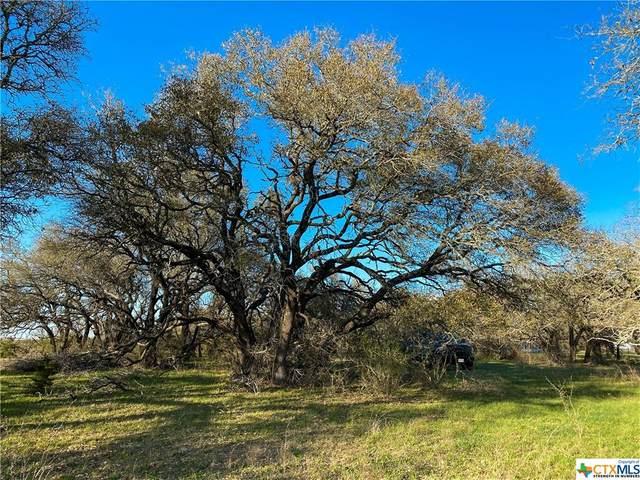 Tract 3 Cr 425, Purmela, TX 76566 (MLS #435524) :: Kopecky Group at RE/MAX Land & Homes