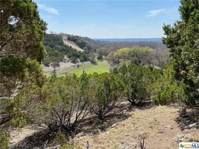 000 Bluff View Road, Kempner, TX 76539 (MLS #435564) :: The Myles Group