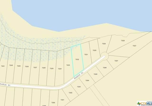6 Redfish Way, Port Lavaca, TX 77979 (#435605) :: First Texas Brokerage Company