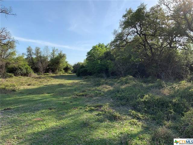 3391 Henderson Road, Victoria, TX 77905 (MLS #435748) :: Kopecky Group at RE/MAX Land & Homes