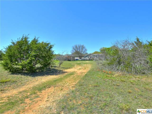 3505 County Road 200, Liberty Hill, TX 78642 (MLS #436038) :: The Myles Group