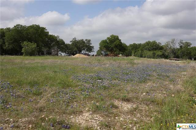 1284 Ambrose Drive, Salado, TX 76571 (MLS #436152) :: The Real Estate Home Team