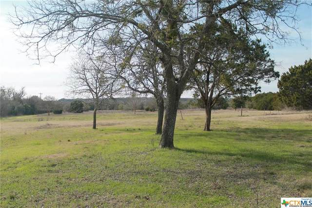 6961 Sparta Road, Belton, TX 76513 (MLS #436161) :: Kopecky Group at RE/MAX Land & Homes