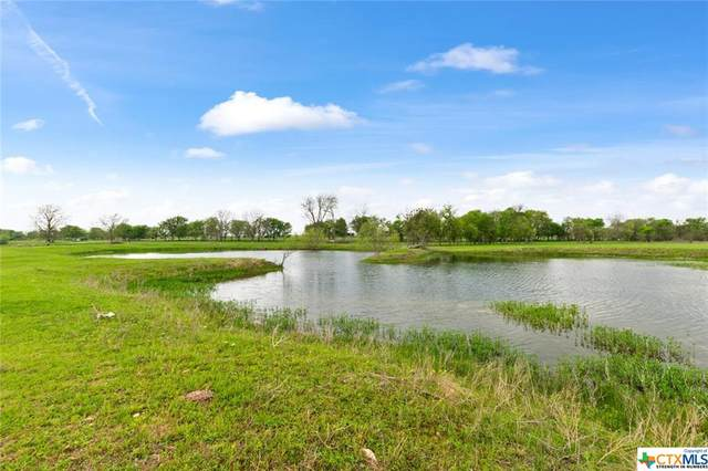 14022 State Highway 317, Temple, TX 76504 (MLS #436357) :: Texas Real Estate Advisors