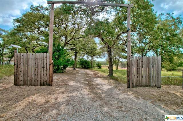 201 Redberry Road, Seguin, TX 78155 (MLS #436390) :: The Real Estate Home Team