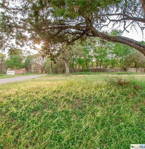 TBD S Walker, Belton, TX 76513 (MLS #436417) :: Kopecky Group at RE/MAX Land & Homes