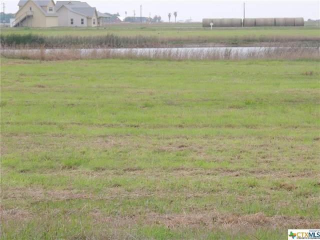 Lot 40 Redfish Drive, Port Lavaca, TX 77979 (#436690) :: Realty Executives - Town & Country