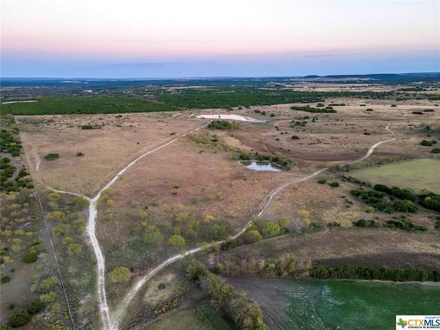 TBD County Road 3270, Kempner, TX 76539 (MLS #436774) :: Texas Real Estate Advisors