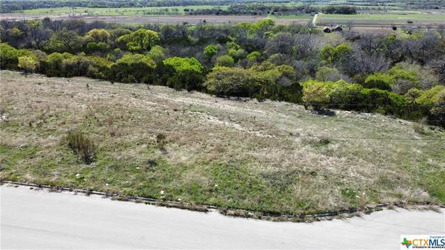 Lot 0003 Magnolia Road, Killeen, TX 76549 (MLS #436911) :: Rutherford Realty Group