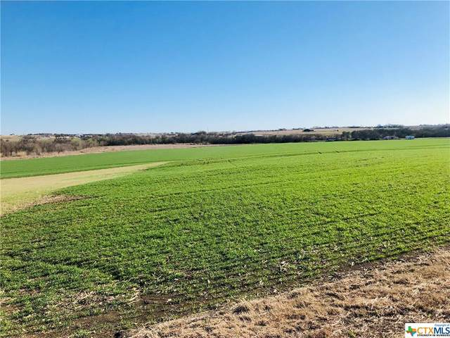Tbd County Rd 424, Thrall, TX 76578 (#436912) :: Realty Executives - Town & Country