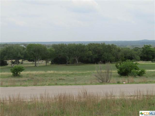 220 Lewis Todd, OTHER, TX 78606 (MLS #437068) :: Texas Real Estate Advisors