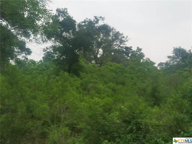 000 County Road 284, Edna, TX 77957 (MLS #437069) :: Neal & Neal Team