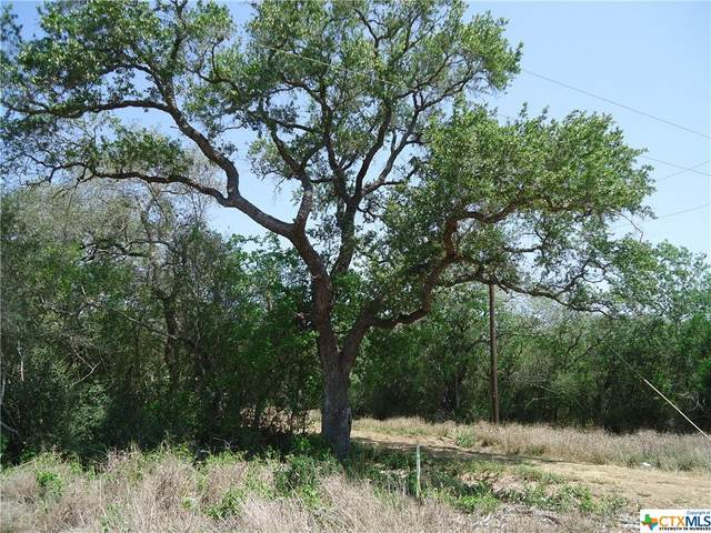 522 Korth Lane, Goliad, TX 77963 (MLS #437154) :: RE/MAX Family