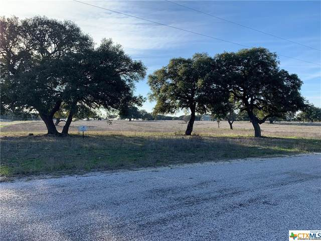 Lot 108 N Waterbuck Way, Lampasas, TX 76550 (MLS #437349) :: The Curtis Team