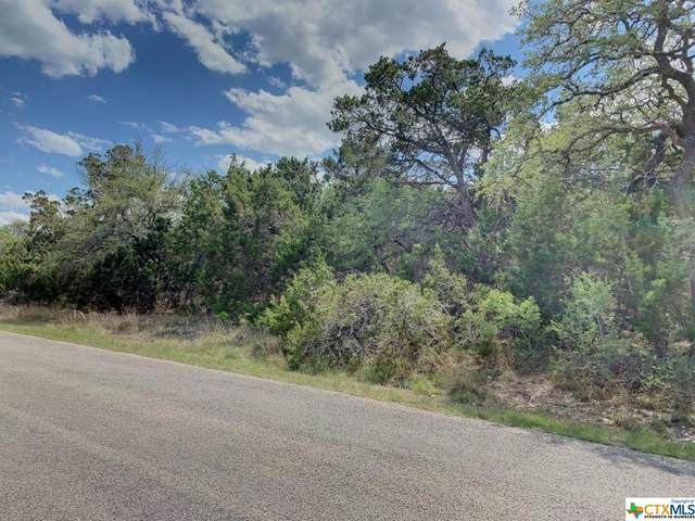 1142 Madrone Road, Fischer, TX 78623 (MLS #437452) :: The Curtis Team