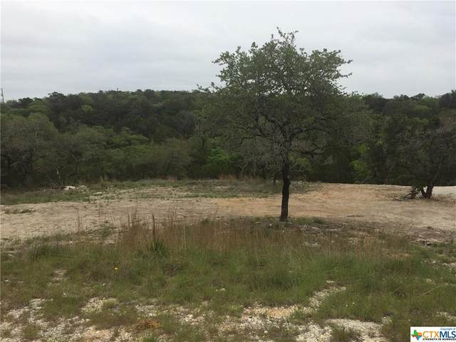 193 Magnolia Meadow, Canyon Lake, TX 78133 (MLS #437575) :: The Curtis Team