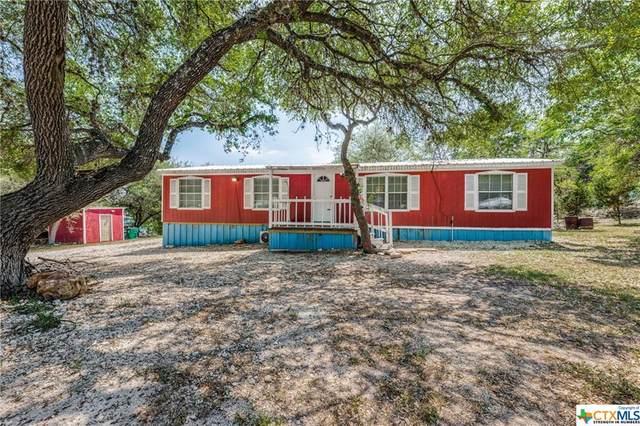 680 & 664 Grandview Bend, Canyon Lake, TX 78133 (MLS #437576) :: Texas Real Estate Advisors