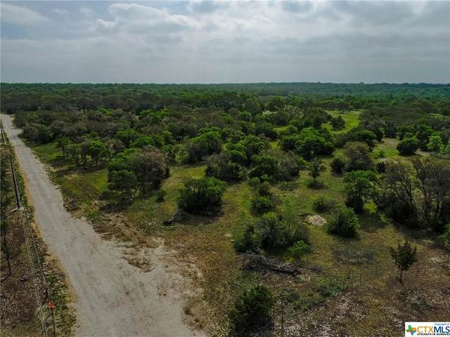Tract 3A N Cr 240, Florence, TX 76527 (MLS #437695) :: The Real Estate Home Team