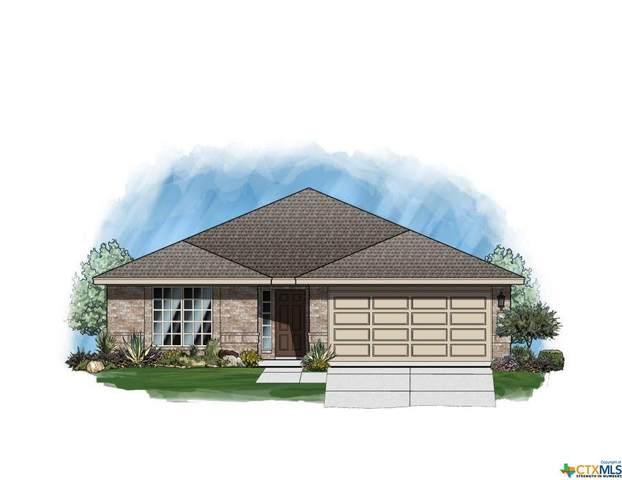 345 Horsemint Way, San Marcos, TX 78666 (MLS #438082) :: RE/MAX Family