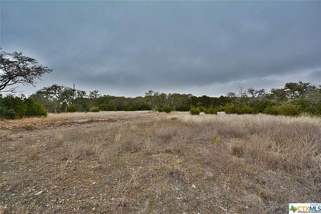 TBD Fm 32 Highway, Fischer, TX 78623 (#438225) :: Realty Executives - Town & Country