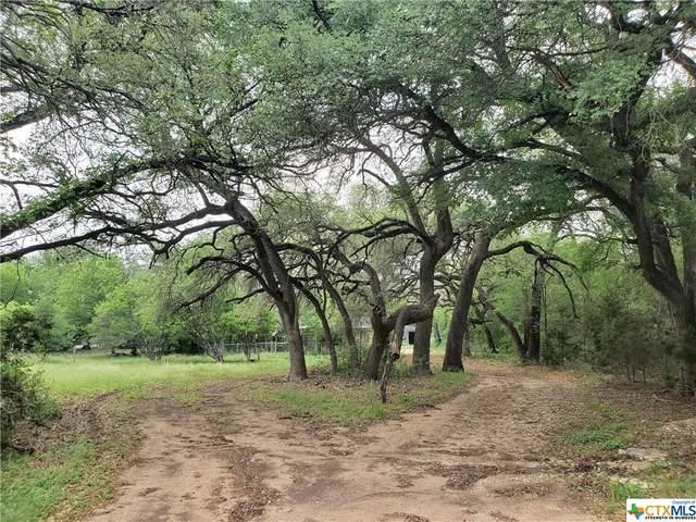 488 Triple 7 Trail, Killeen, TX 76542 (MLS #438231) :: Texas Real Estate Advisors