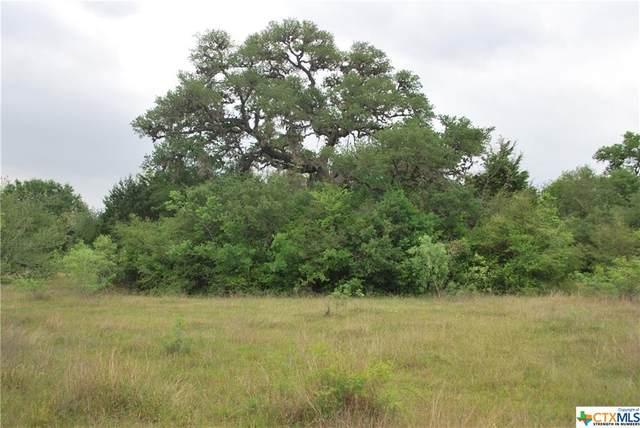 TBD Birdhouse Hill Road, Schulenburg, TX 78956 (MLS #438495) :: Neal & Neal Team