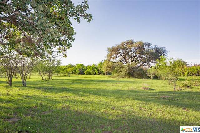 Tract 2 Weber Lane, Victoria, TX 77905 (MLS #438504) :: Kopecky Group at RE/MAX Land & Homes