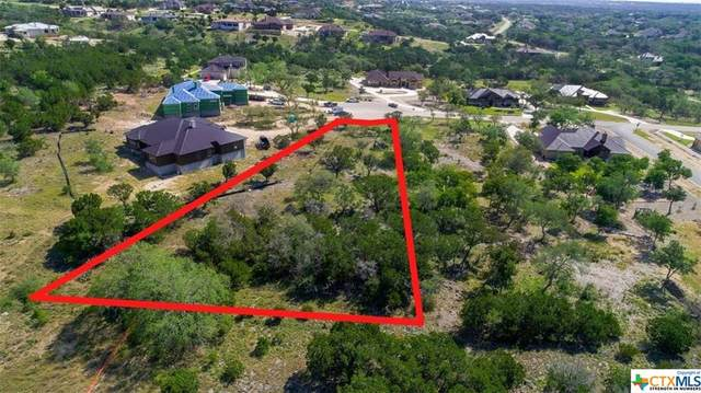 5721 Dry Comal Drive, New Braunfels, TX 78132 (MLS #438520) :: The Real Estate Home Team
