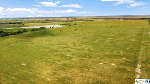 10532 Us Highway 77, Victoria, TX 77905 (MLS #438525) :: Kopecky Group at RE/MAX Land & Homes