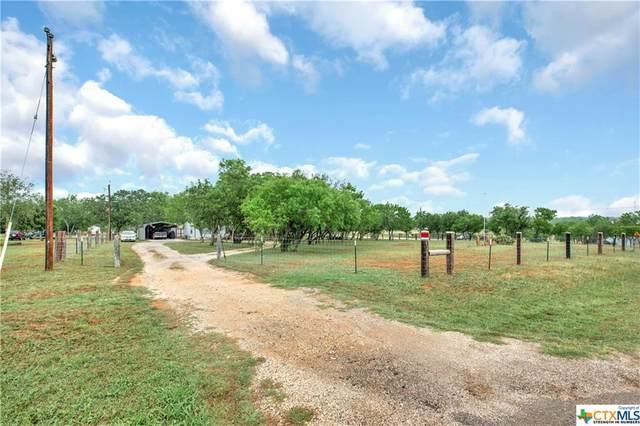 1385 Rawhide Road, Seguin, TX 78155 (MLS #438611) :: Texas Real Estate Advisors