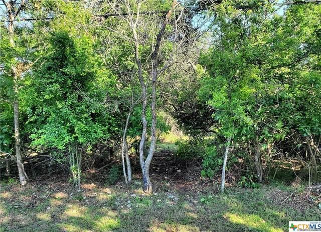 5922 Denmans Loop, Belton, TX 76513 (MLS #438642) :: The Real Estate Home Team