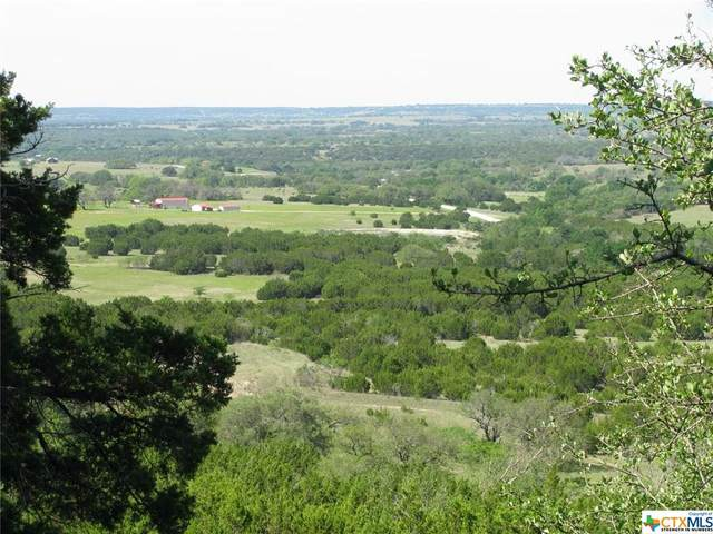 TBD Fm 1690, Gatesville, TX 76528 (MLS #438917) :: RE/MAX Family