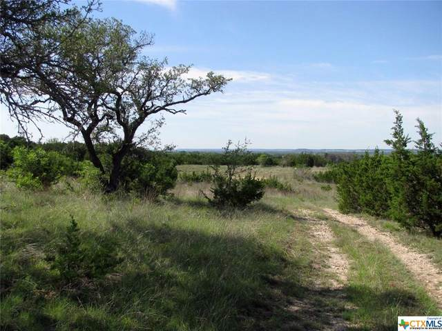 TBD-17.6 Fm 1690, Gatesville, TX 76528 (MLS #438965) :: RE/MAX Family