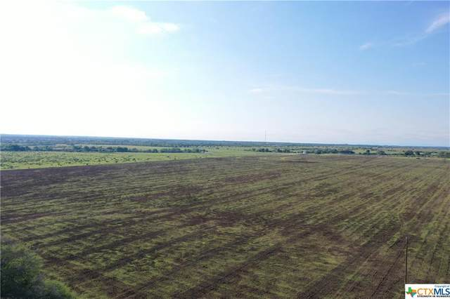 4106 Concrete Edgar Road, Cuero, TX 77954 (MLS #439114) :: The Myles Group
