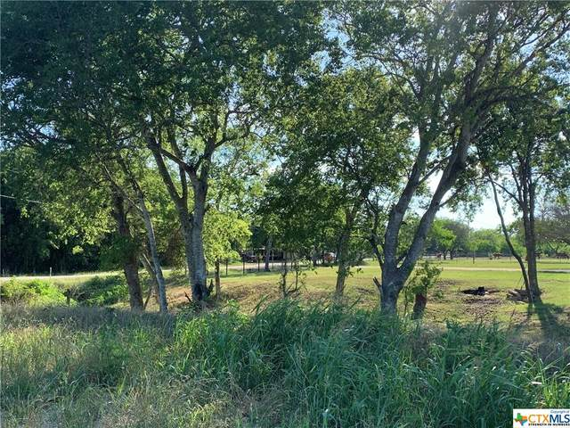 1254 County Rd 342, Gonzales, TX 78629 (MLS #439149) :: The Zaplac Group