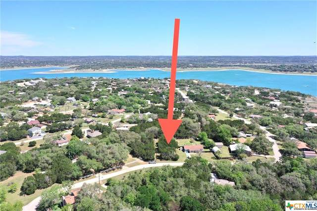 2860 Lakeview Drive, Canyon Lake, TX 78133 (MLS #439153) :: The Real Estate Home Team