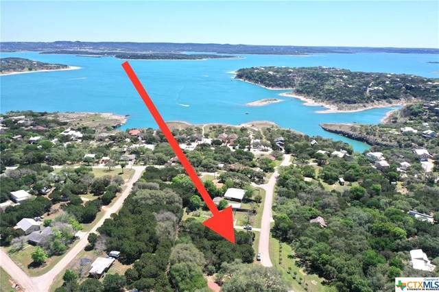 2872 Lakeview Drive, Canyon Lake, TX 78133 (MLS #439165) :: The Real Estate Home Team