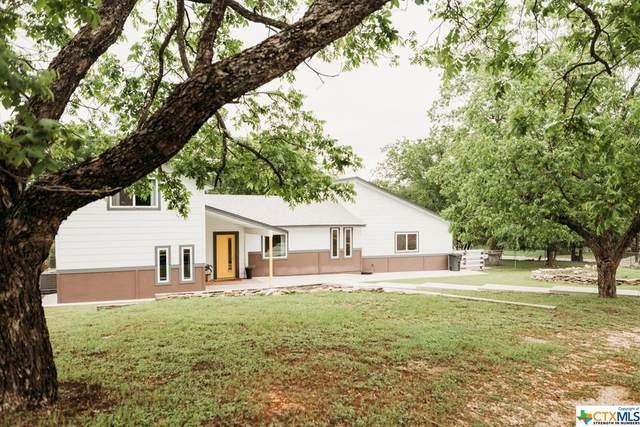 203 N Spring Street, Lampasas, TX 76550 (MLS #439334) :: Vista Real Estate