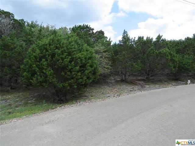 15777 Salado Drive, Temple, TX 76502 (MLS #439437) :: Brautigan Realty