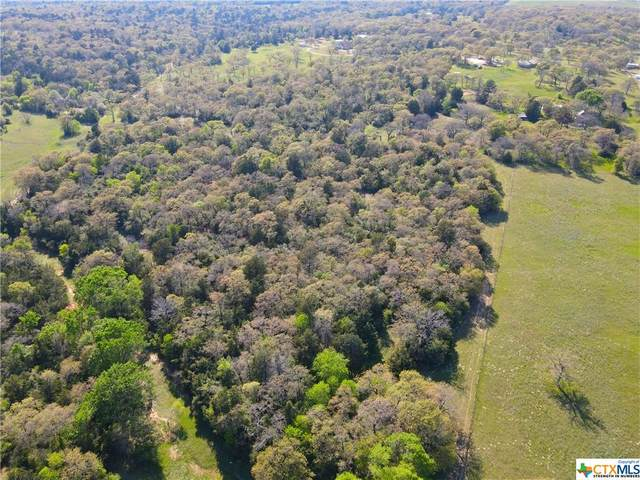 TBD County Road 238A #14, Cameron, TX 76520 (MLS #439525) :: Neal & Neal Team