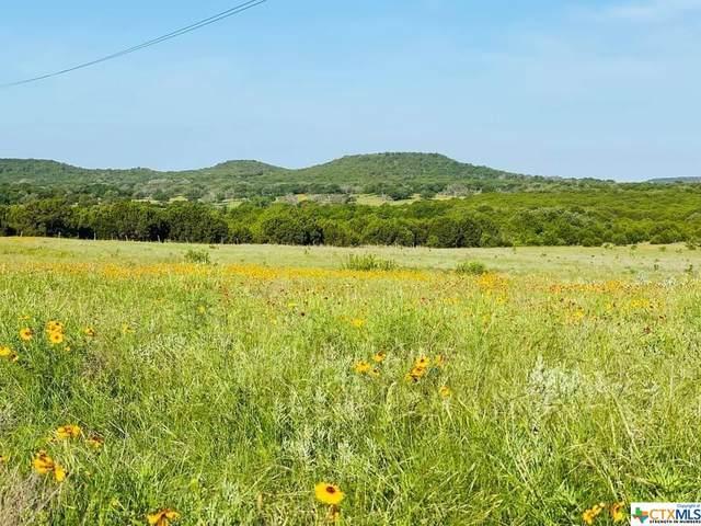 1471 Lutheran Church Rd Ryatt Ranch Lot 14 Blk 1 Lake, Copperas Cove, TX 76522 (#439539) :: First Texas Brokerage Company