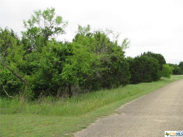 TBD King Ranch Road, Gatesville, TX 76528 (MLS #439550) :: The Zaplac Group