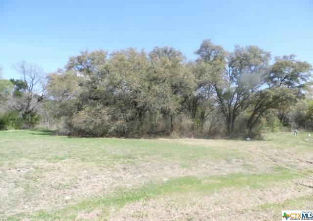 100 Nathan Lane, Belton, TX 76513 (MLS #439573) :: The Myles Group