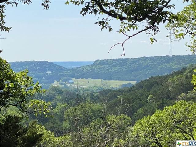1405 Buckboard Trail, Copperas Cove, TX 76522 (MLS #439812) :: The Real Estate Home Team