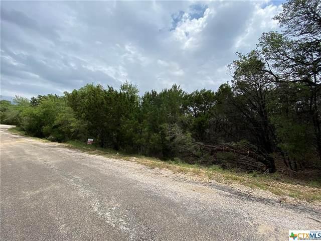 3805 Crockett Avenue, Lago Vista, TX 78645 (MLS #439942) :: The Real Estate Home Team