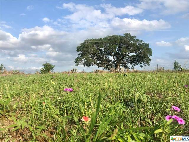 1162 County Road 122, Floresville, TX 78114 (MLS #440138) :: Kopecky Group at RE/MAX Land & Homes