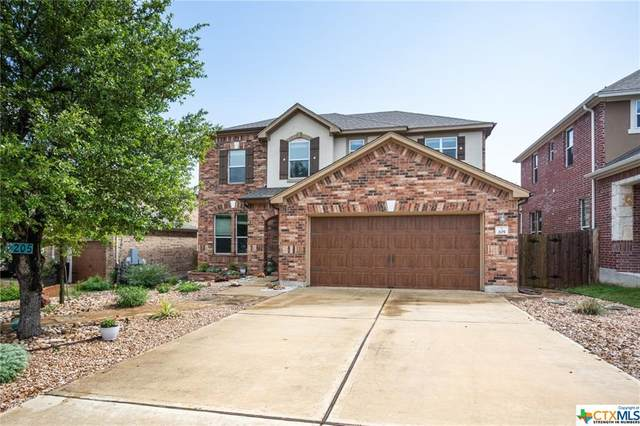 205 Sky Springs Pass, San Marcos, TX 78666 (MLS #440173) :: The Real Estate Home Team