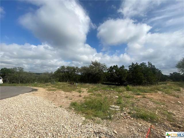 1230 Wild Rose Road, New Braunfels, TX 78132 (MLS #440175) :: The Real Estate Home Team